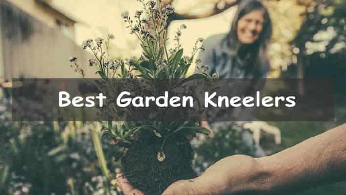 Best Garden Kneelers